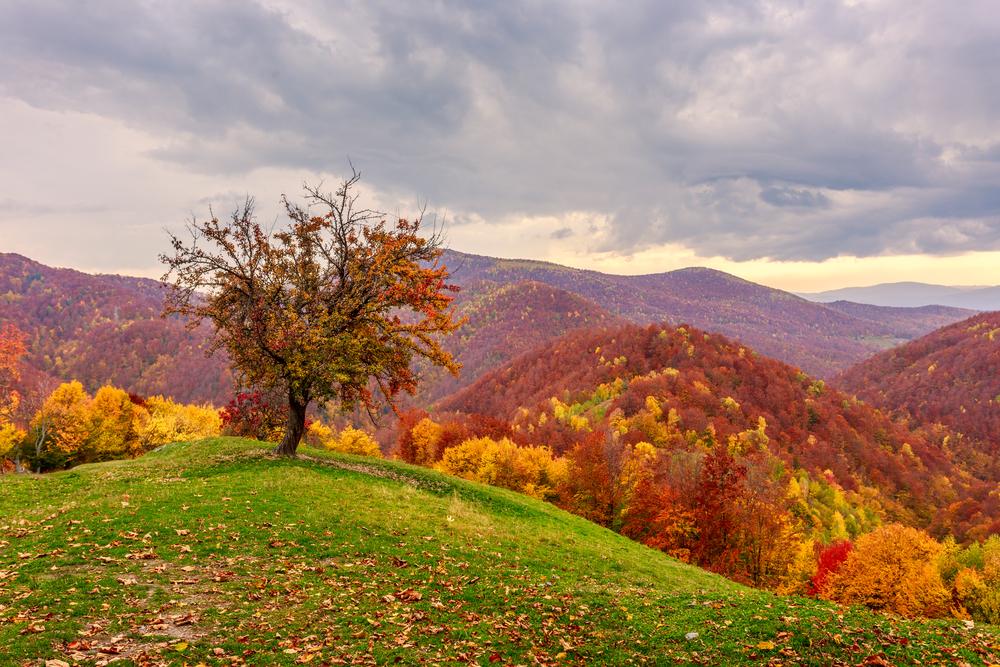 Transylvania,Romania