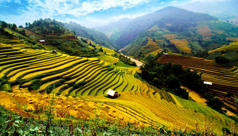 Muong Hoa Valley, Vietnam
