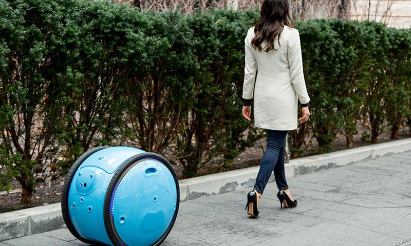 Gita, the autonomous cargo robot